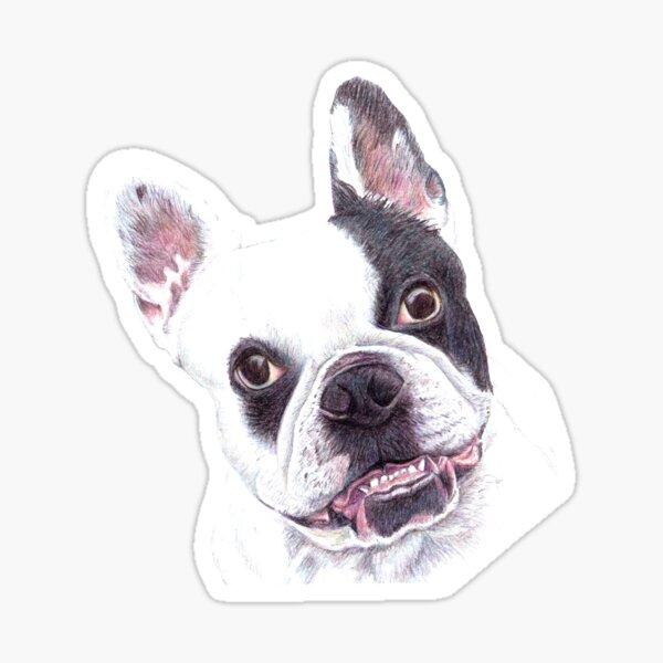 French Bulldog illustration Sticker