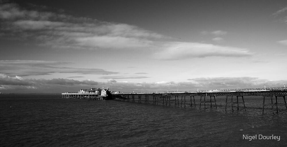 Birnbeck Pier by Nigel Dourley
