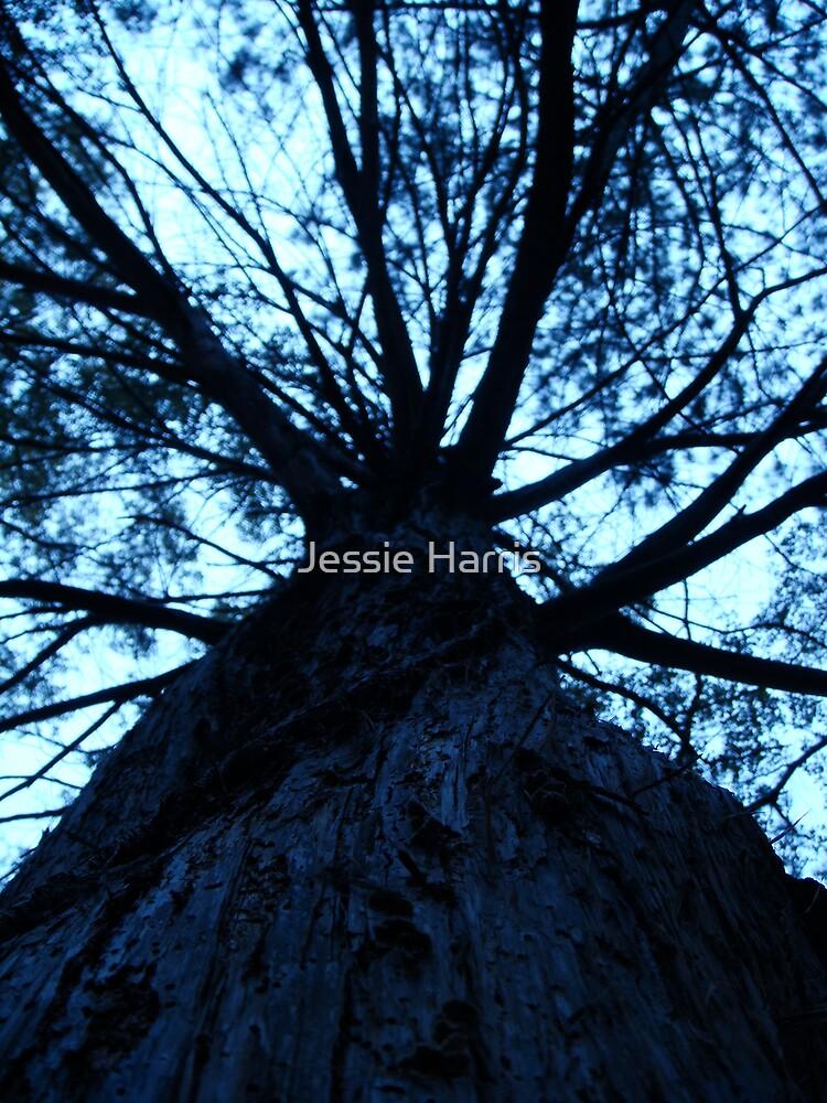 Blue Giant by Jessie Harris