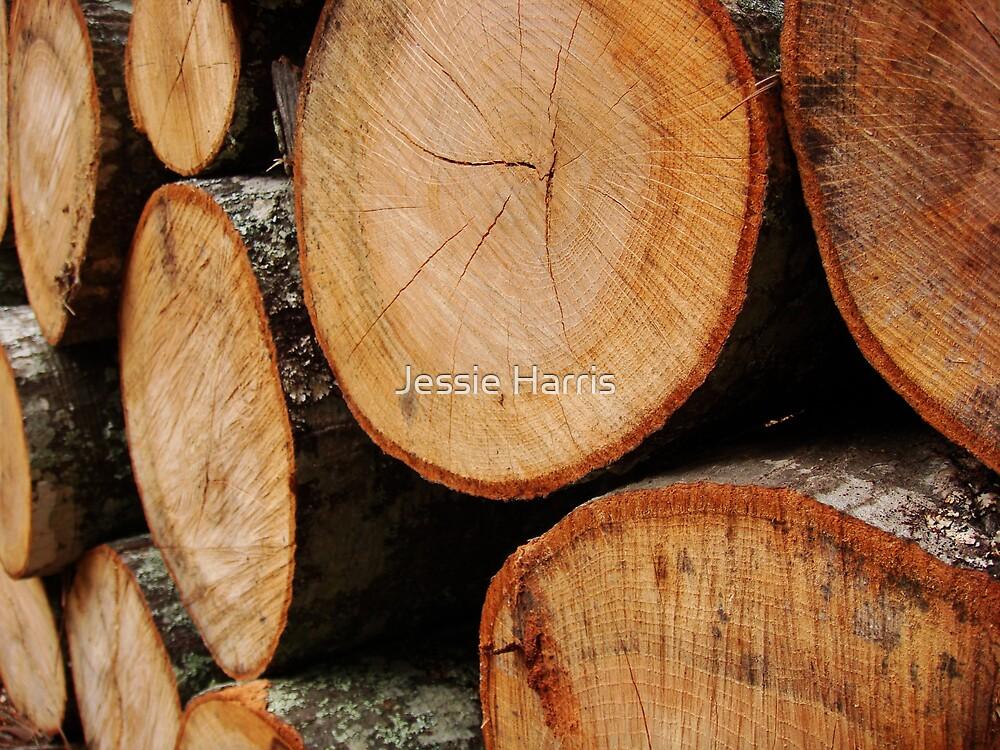 Firewood by Jessie Harris