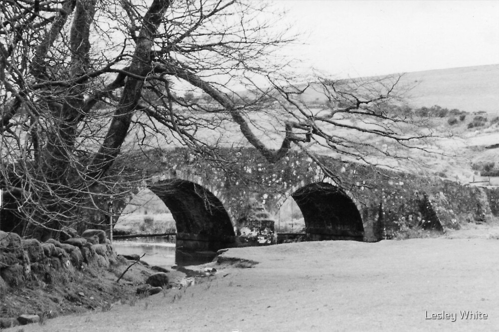 Two more bridges by Lesley White