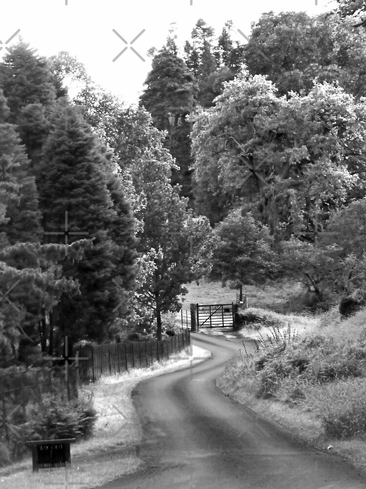 The Short and Winding Road by Yampimon