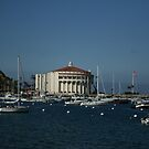 Catalina Island Bay and Casino by cfam