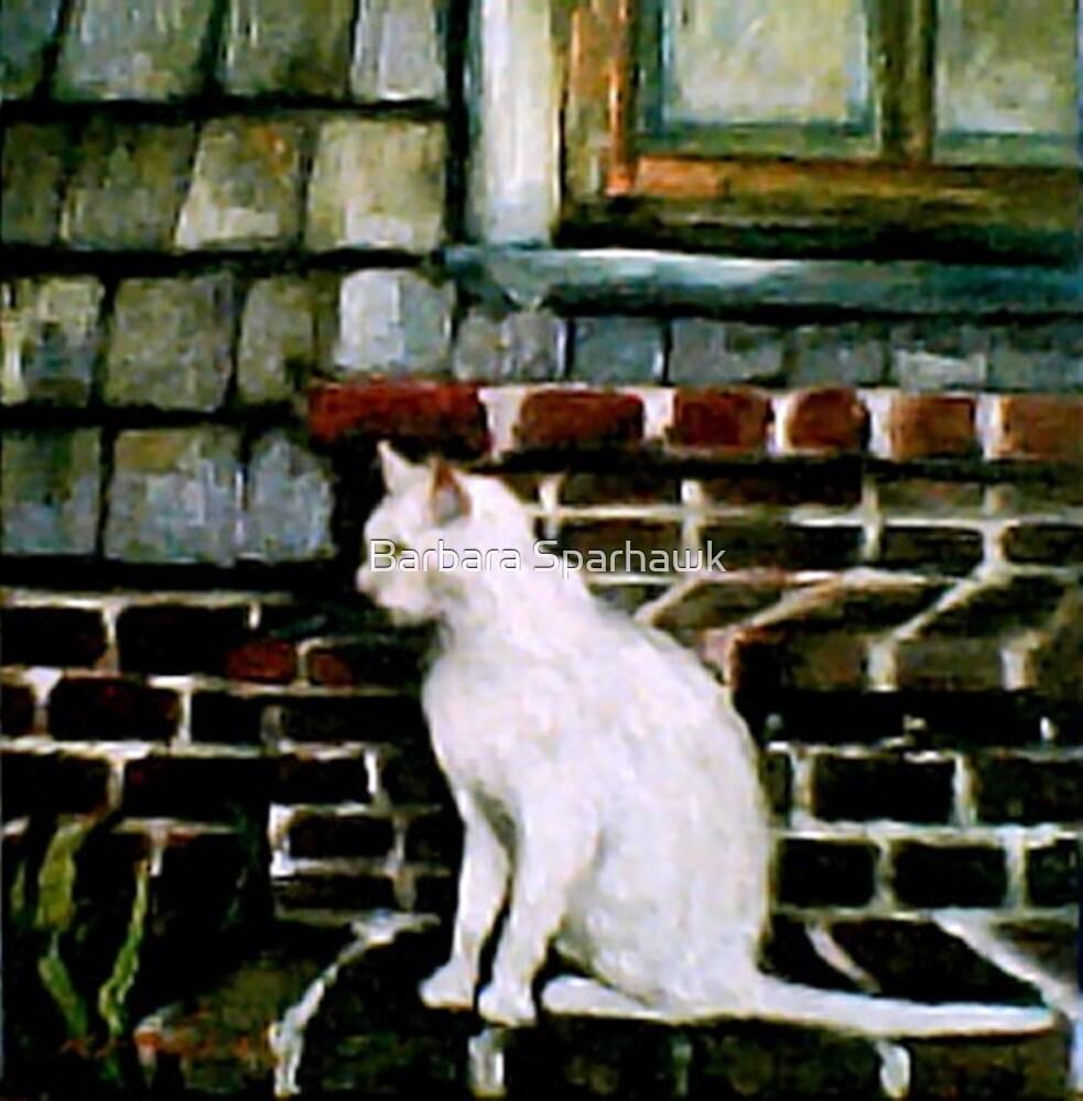 Babette in Bluemont by Barbara Sparhawk