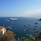 Catalina Island Bay and Carnival Cruise Ship by cfam