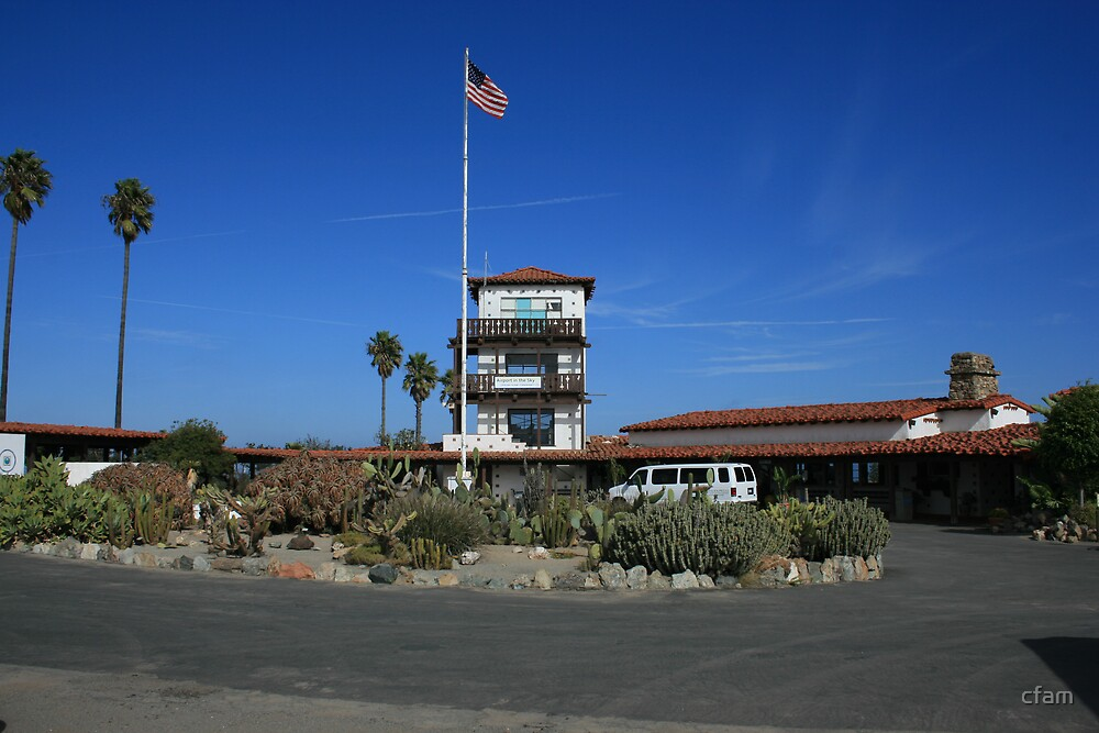 Catalina Island Airport by cfam