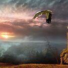Stork Sunset by Igor Zenin