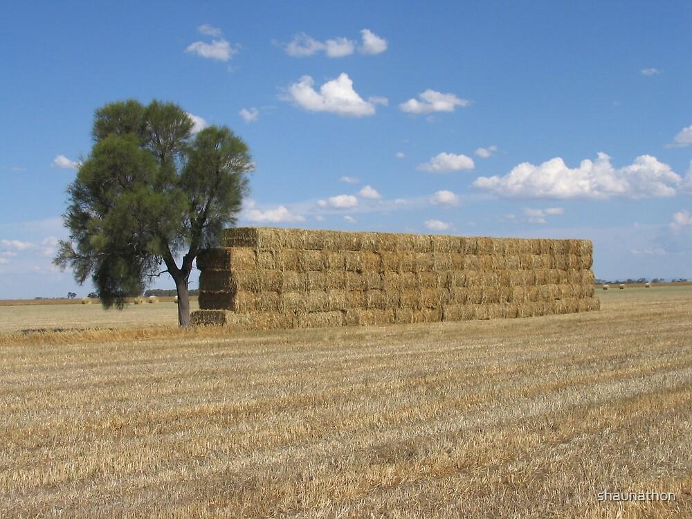 Haystack by shaunathon
