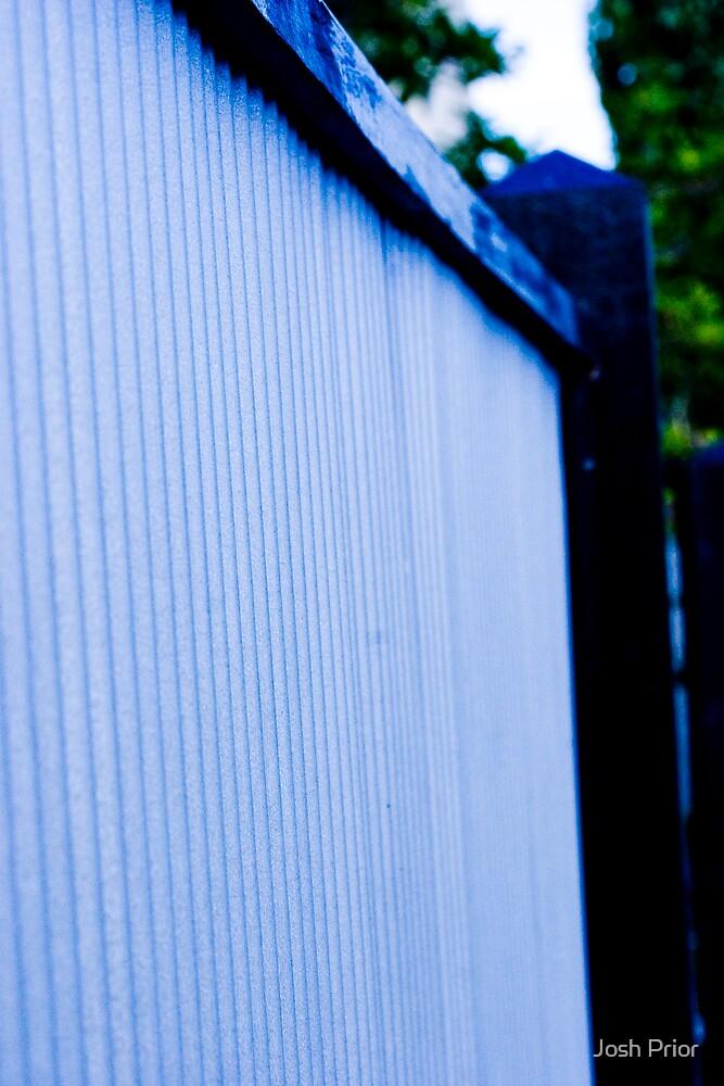 Blue Tin by Josh Prior