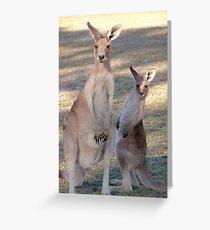 Kangaroo with Joey Greeting Card