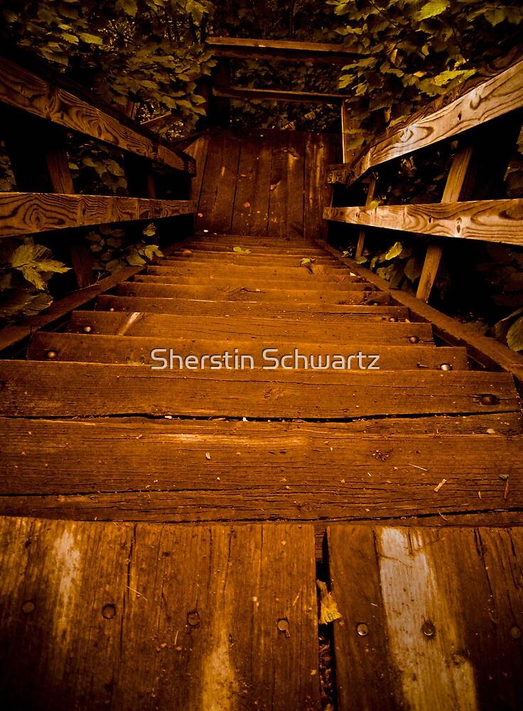 Going Down by Sherstin Schwartz