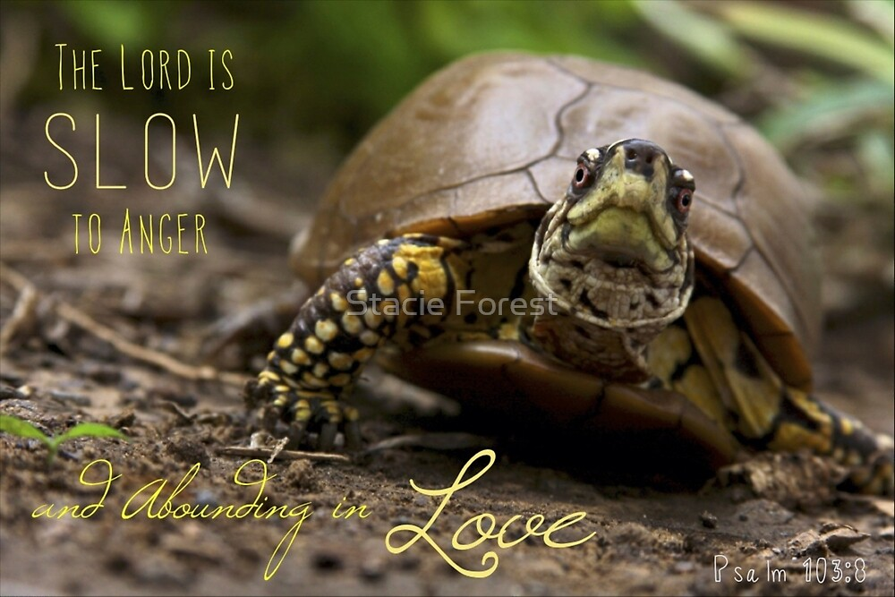 Slow to anger by Stacie Forest