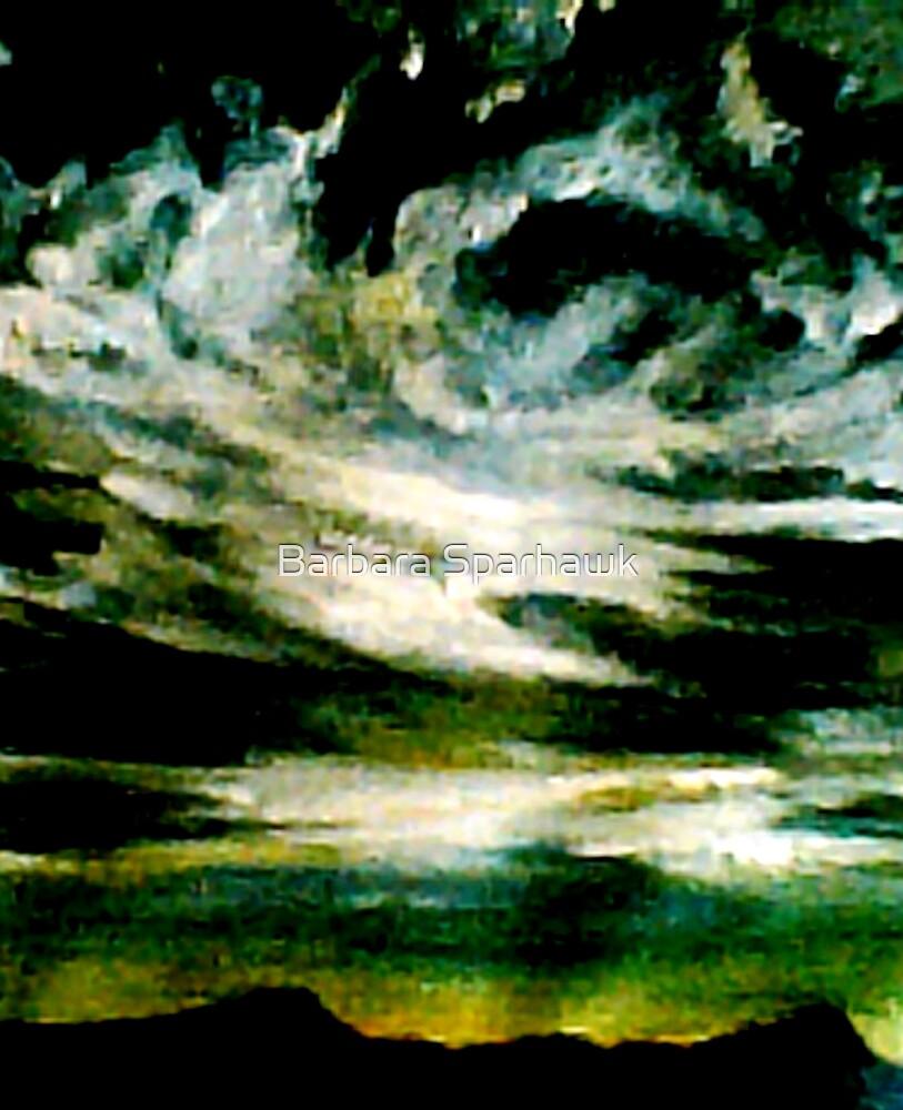 Big Sur Dawn by Barbara Sparhawk