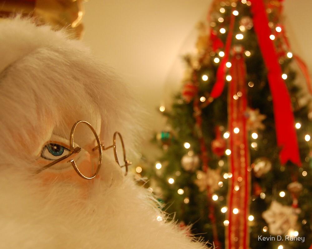 Santa 2007 by Kevin D. Raney