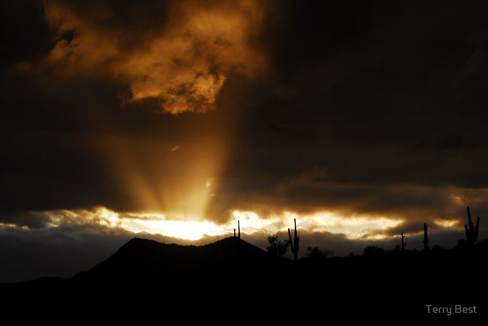 Arizona Mountain Sunset by Terry Best