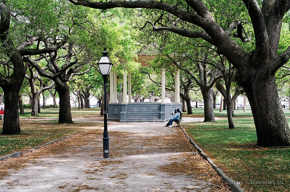 A Day In The Park by James J. Ravenel, III