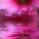 summer flower by theonlyjill