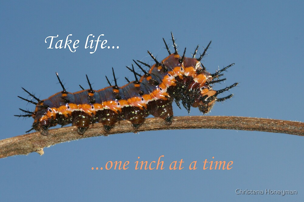 One Inch At a Time by Christena Honeyman