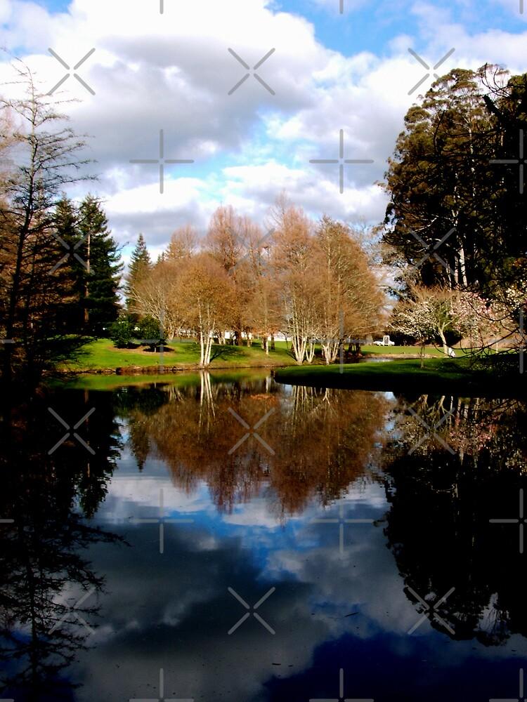 Reflective Moments by Varinia   - Globalphotos