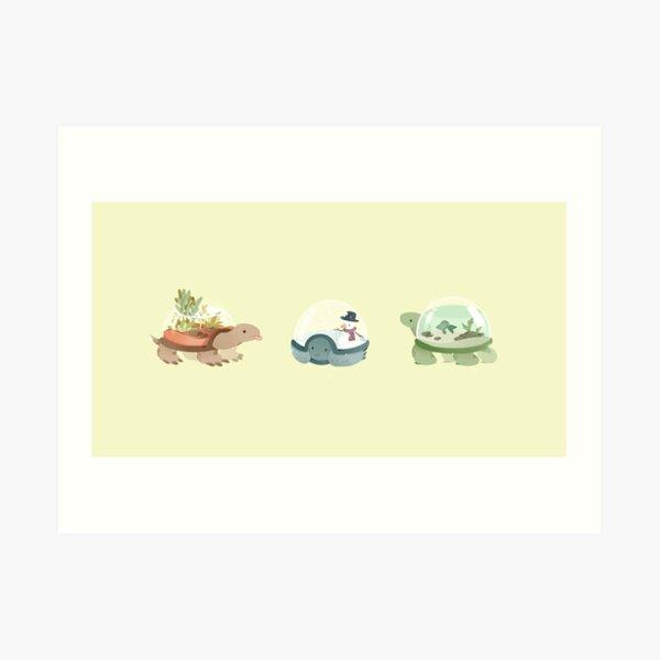Odd Shells Art Print