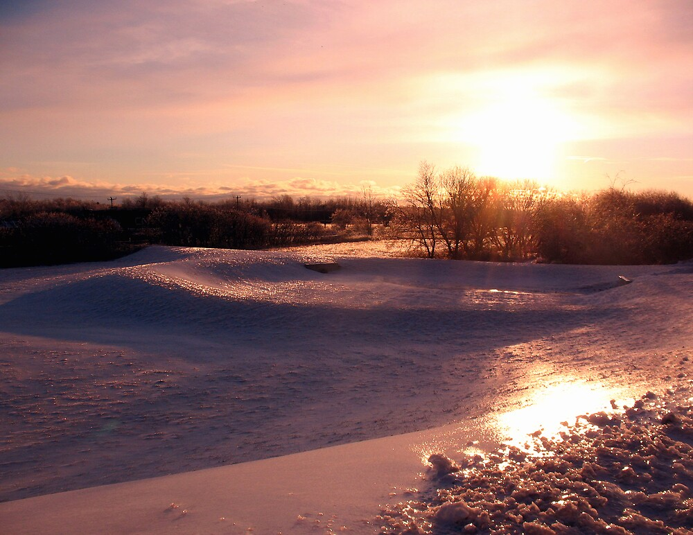 Icy Landscape by nikspix
