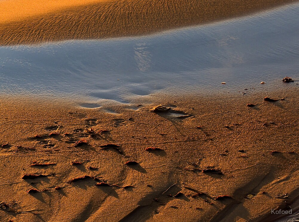 Sand Abstraction by Kofoed