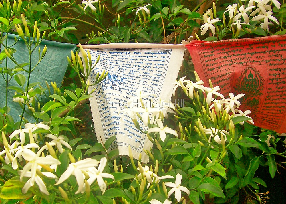prayer flags by Peta Hurley-Hill