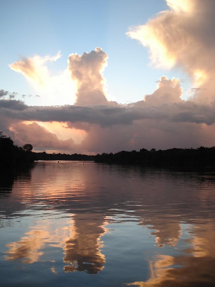 Majestic Amazon by Zac Gillett