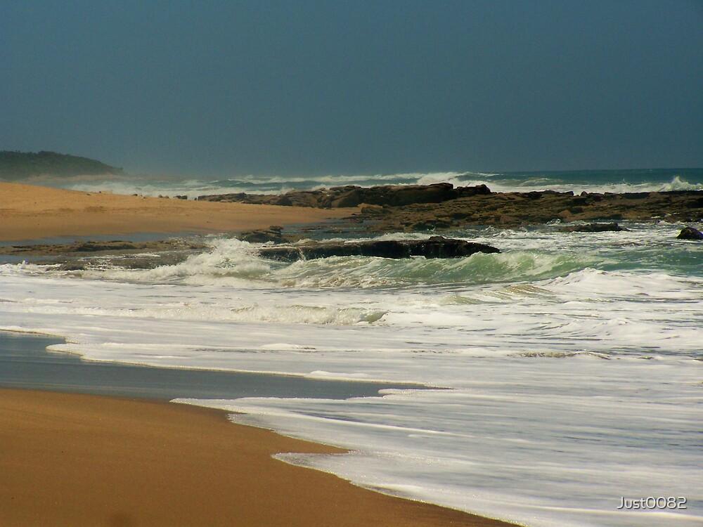 """Wild Coast"" by Just0082"