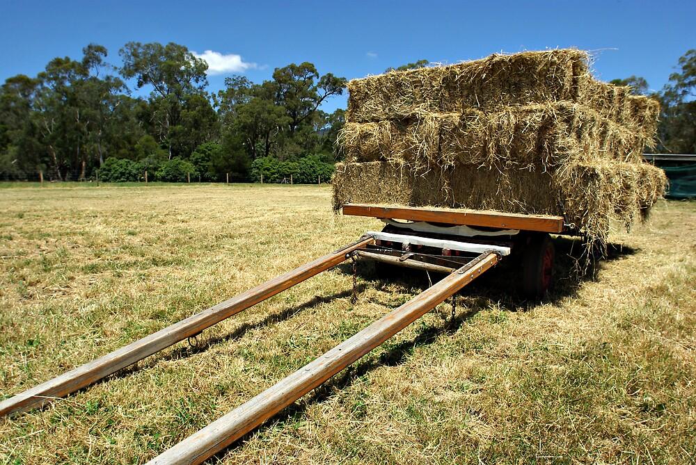 hay cart by Robert Kiesskalt
