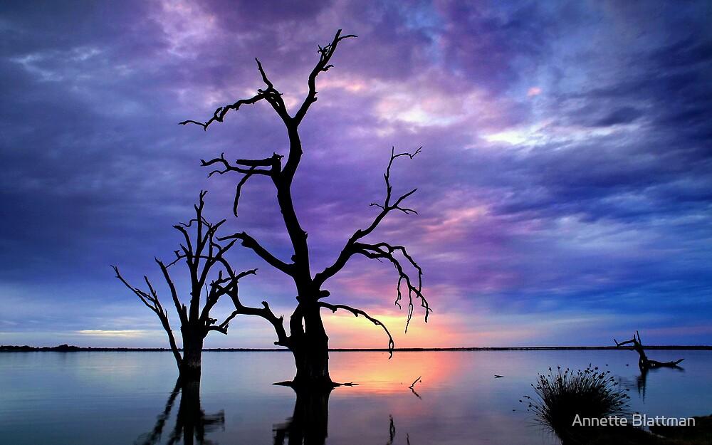 Twilight Trees by Annette Blattman