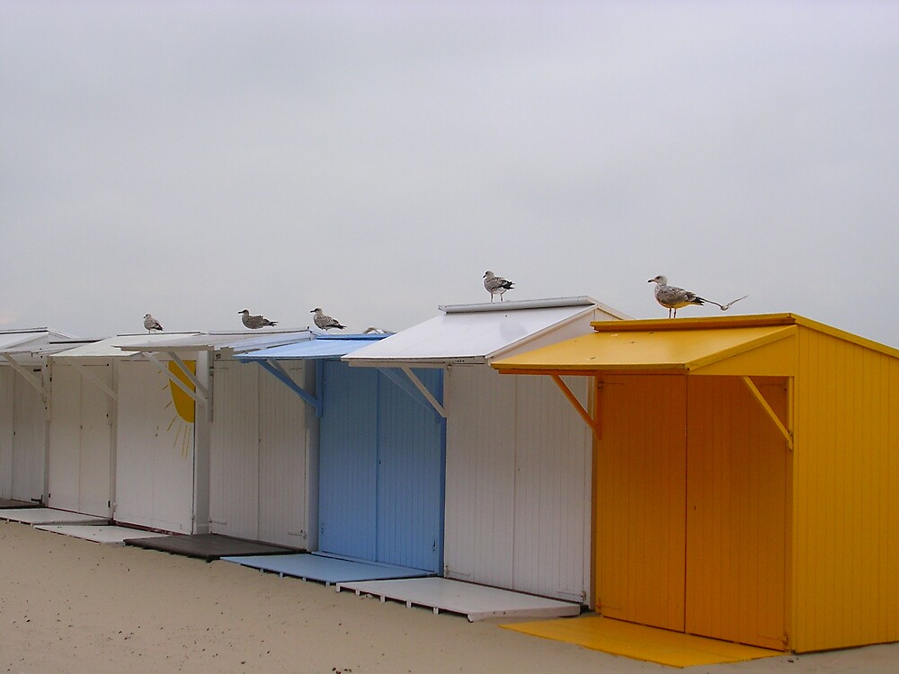 Belgian beach by altix