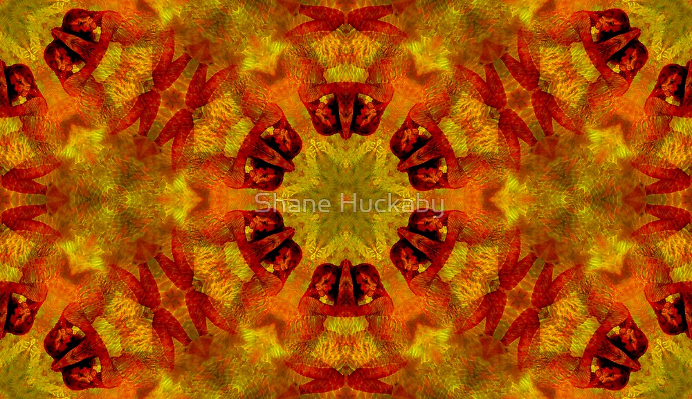 Fire Woman2 by Shane Huckaby