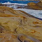 A Rocky Coast by Barbara  Brown
