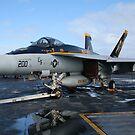 F/A 18E Hornet by Nigel Donald