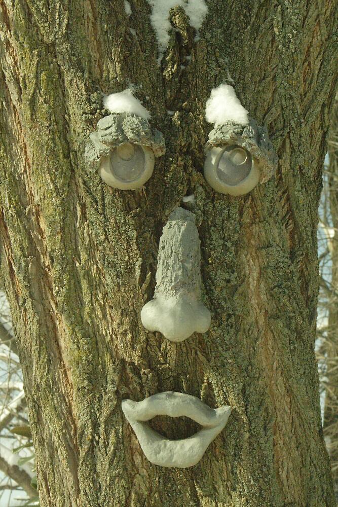 Tree Man by Sheri Ann Richerson