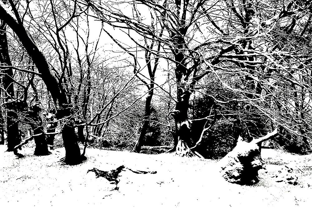 A Winter Landscape by kitlew