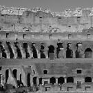 Colosseum by Lisa Trainer