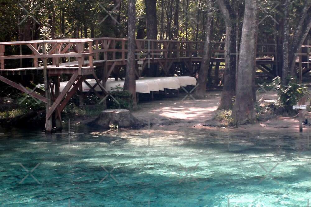 Canoes at Blue Springs by Stacey Lynn Payne