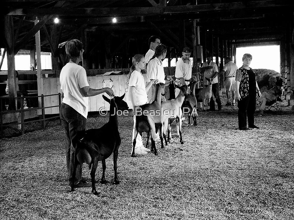 Goat Show by © Joe  Beasley IPA