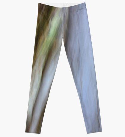 Eucalypt Leggings
