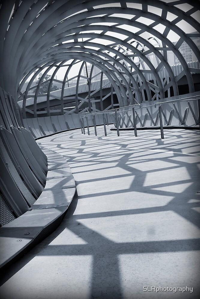Webb Tunnel by SLRphotography