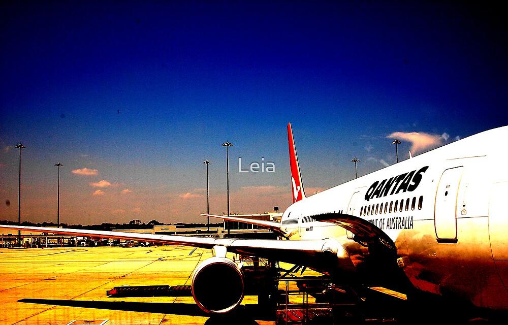 Qantas by Leia
