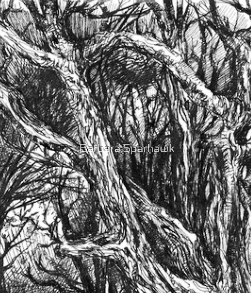 Yosemtie Foothills by Barbara Sparhawk