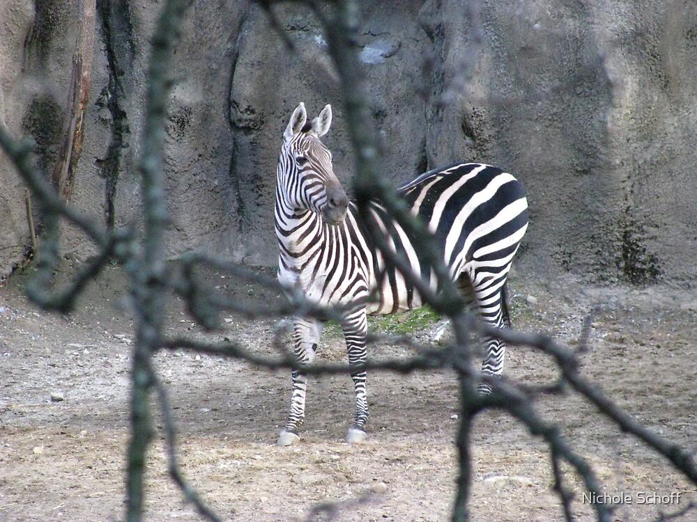 Stripes by Nichole Schoff