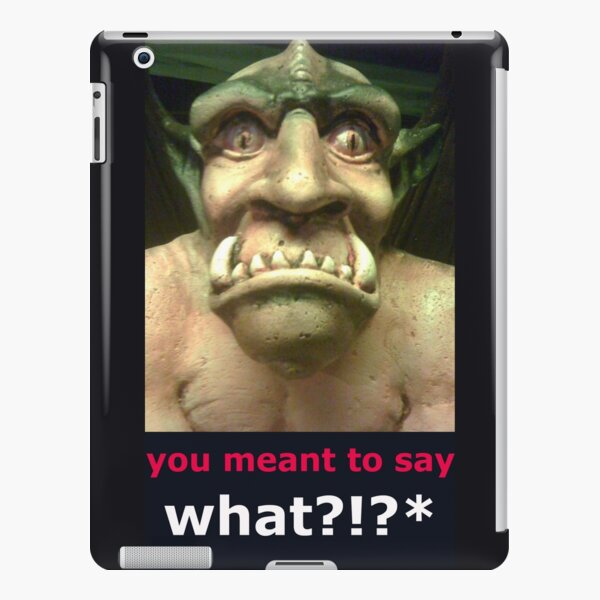 you meant to say what?! iPad Snap Case