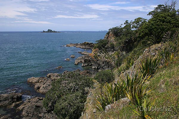 New Zealand Beauty by DebblesNZ