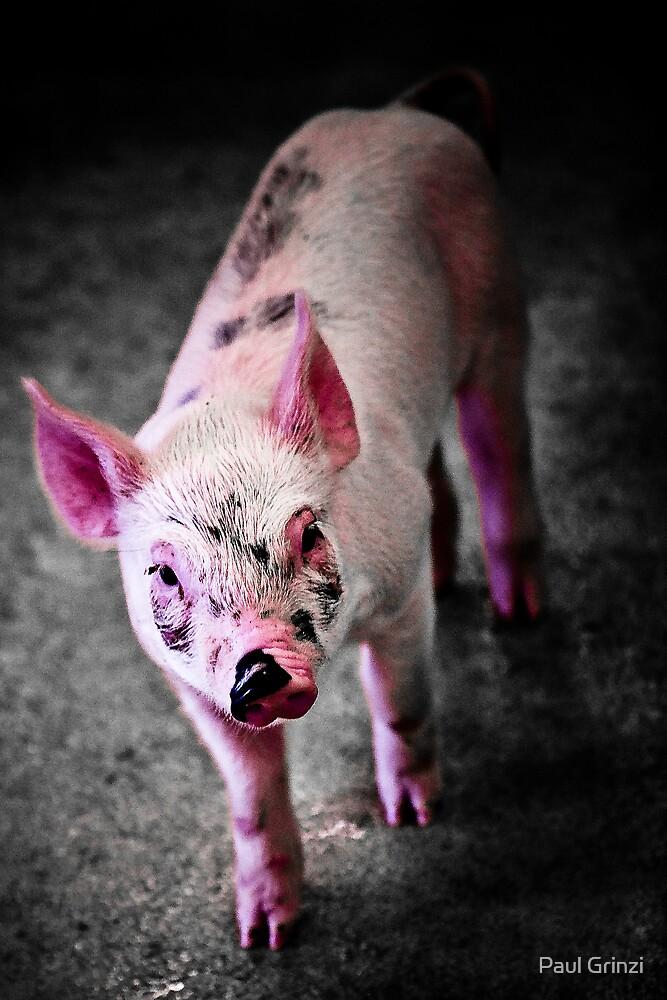 Pink by Paul Grinzi