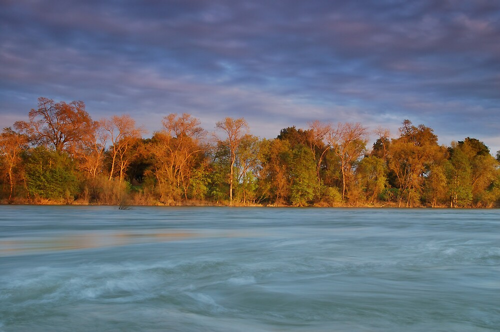 American River by MarkR
