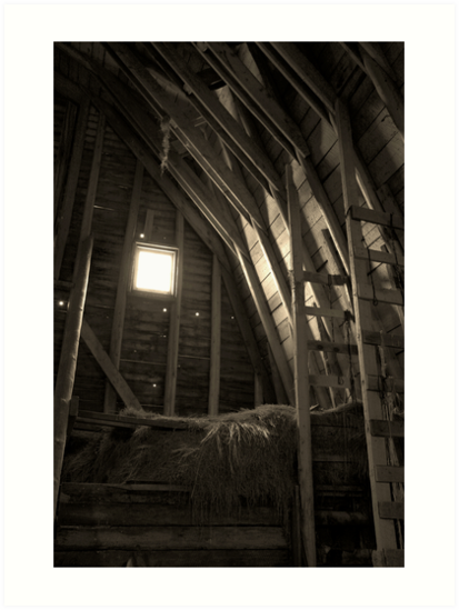 Inside The Barn by Nikki Moore
